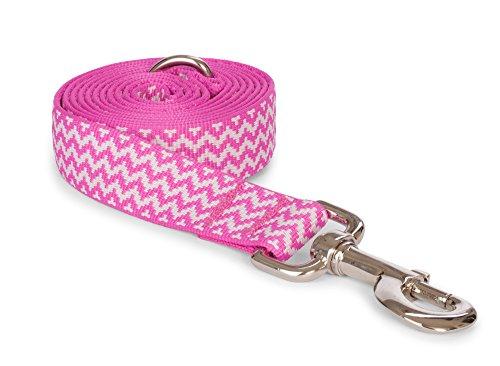 FAB Hund Chevron Leine-Pink-Kleine-5/20,3cm X 5Fuß - Fab Füße