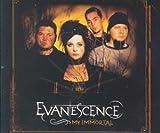 Evanescence Gothic metal