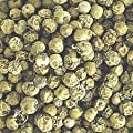 Green Peppercorns - Grade A Premium Quality from FGS Ingredients Ltd