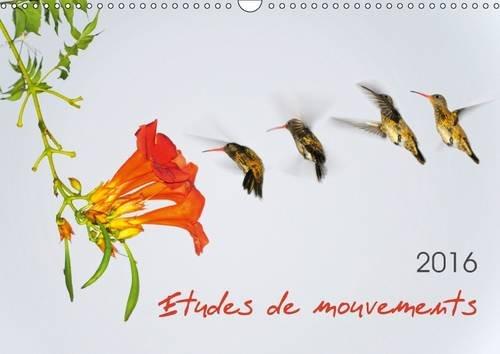 Etudes de mouvements : Etudes de mouvements: série de douze photos mettant en scène la dynamique des mouvements : animaux, personnages, sports. Calendrier mural A3 horizontal 2016