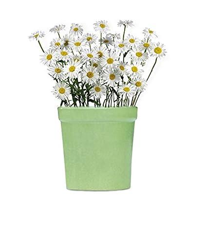 9.1 cm, handgefertigt, Keramik, Blumentöpfe/Pflanzgefäße für innen & Outdoor, Grün, rund Übertopf, klein/Kinderzimmer Geschenk für Fenster, Balkon und Garten