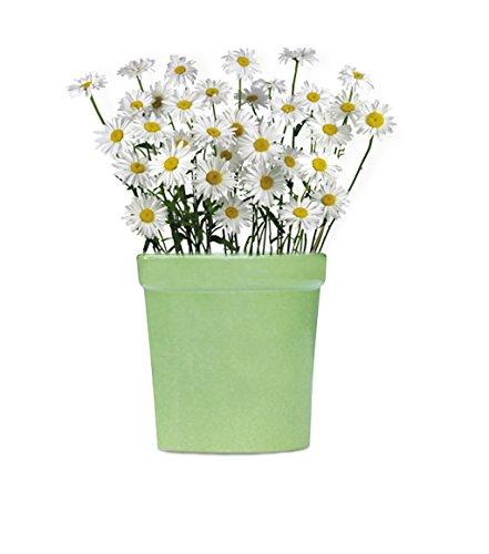 9.1 cm, handgefertigt, Keramik, Blumentöpfe/Pflanzgefäße für innen & Outdoor, Grün, rund Übertopf, klein/Kinderzimmer Geschenk für Fenster, Balkon und Garten (Indoor-pflanzgefäße-keramik)