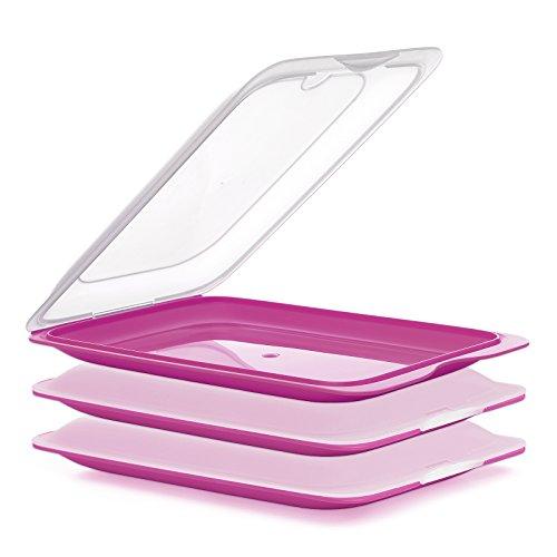 PracticFood FRESH System - Hochwertige Aufschnitt-Boxen, Frischhaltedose für Aufschnitt. Wurst Behälter. Optimale Aufbewahrung im Kühlschrank, 3 Stück Farben Rosa, Maße 17 x 3.2 x 25.2 cm