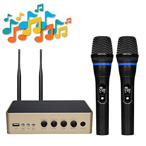 E-kinds Tragbares kabelloses Mikrofon, Ultra-Hochfrequenz-Bluetooth-Vollverstärker mit einstellbarem Bass-Höhen-System Family Party, kleine Karaoke-Nacht,Gold 12-kanal-handheld-empfänger
