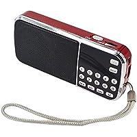 Radio FM/MP3/USB/SD/TF PORTÁTIL PRUNUS. Batería Recargable y reemplazable para reproducciones largas (Más de 10 Horas), con Antena Oculta. (Sin función de Memoria Manual).
