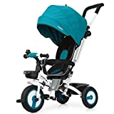 Fascol 4 in 1 Dreirad Klappbar Kinderwagen Tricycle für Kinder ab 6 Monate bis 5 Jahren, Kinderdreirad mit Abnehmbarer Sonnendach Schubstange, Blau