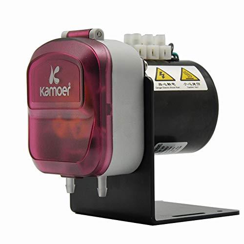 ZHAODALEI Wechselstrommotor 220 V Schlauchpumpe Wasserpumpen geräuschlos, Pumpenkopf für einfache Demontage, einfache Reinigung und Wartung - Für Aquarien, Labor und andere Anwendungen,B