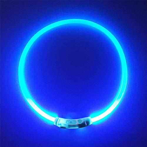 Cœur Cheval Collier de sécurité pour chien LED ultra lumineux USB rechargeable, découpé à n'importe quelle Taille s'adapte pour tous les chiens, d'une meilleure visibilité et sécurité pour animaux