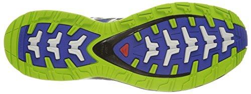 Salomon Xa Pro 3d, Chaussures de Trail Homme Bleu (Cobalt/Process Blue/Granny Green)