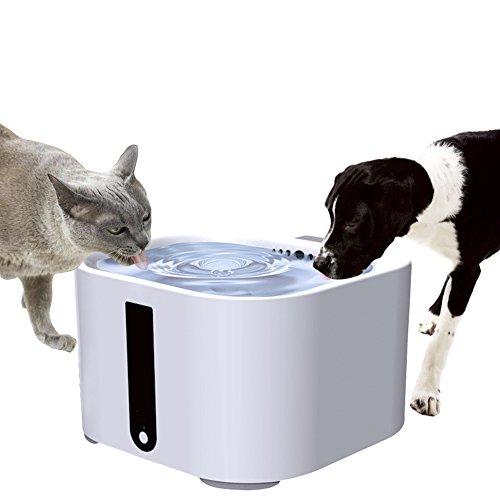 Per Haustier Wasser Feeder Brunnen Dispenser Automatische Abschaltung & Intelligent Mode Schüssel Container Für Hund Katze (12L Kapazität) (Fließendes Wasser Katze Schüssel)