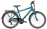 Herren Citybike 26 Zoll blau - Pegasus Avanti Fahrrad - Shimano Kettenschaltung, StVZO Beleuchtung