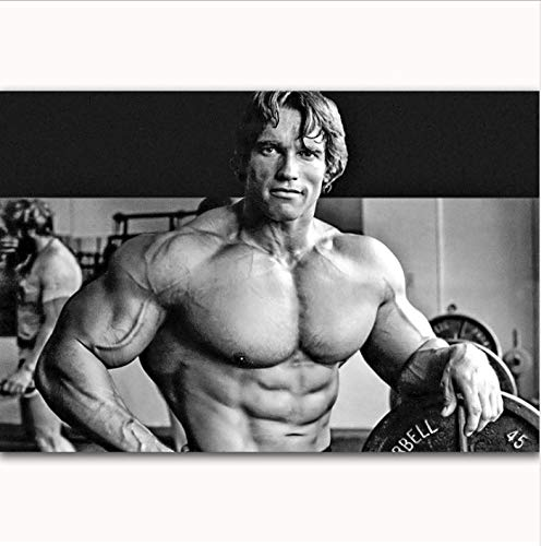 yhnjikl Arnold Schwarzenegger Bodybuilding Fitness Gym Heiße Neue Kunst Poster Top Silk Licht Leinwand Wohnkultur Wandbild Drucke 40X60 cm Ohne Rahmen
