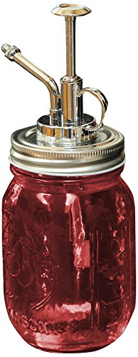 Toland Home Garden 340042–Mason Jar Pflanze Mister Rot Dekorative, Pint