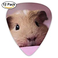 Lovely Guinea Pigs Classic Guitar Pick (12 Pack) for Electric Guita Bass