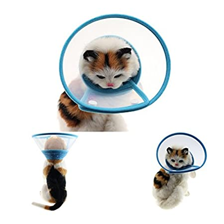 Ueetek Kunststoff-Körper für kleine Hunde, Katzen, Größe S