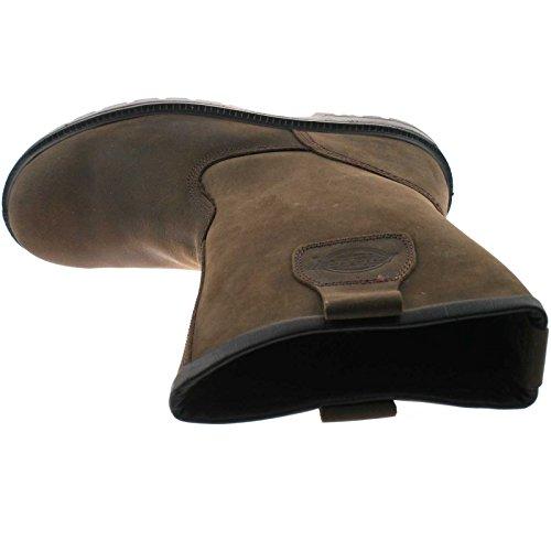 Dickies FD9204 Nevada Rigger Sicherheit Arbeit Stiefel s Leder ausgekleidet Shoe Brown