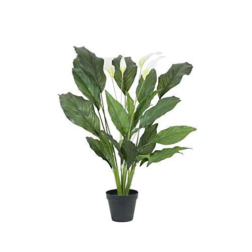 EUROPALMS 82505662 Spathiphyllum Deluxe 83 cm, Mehrfarbig, Einheitsgröße