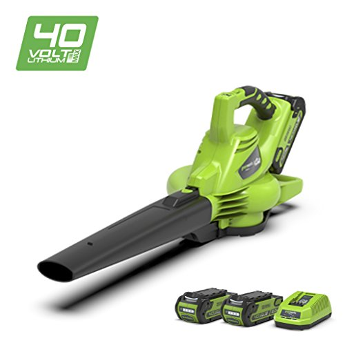 Greenworks Tools GD40BVK2X (Art No: 24227UC)