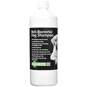 Aqueos-Anti-bacterial-Dog-Shampoo-1-Litre