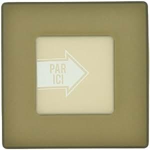 -Protège Cache Interrupteur Phosphorescent Glow in the Dark Gris