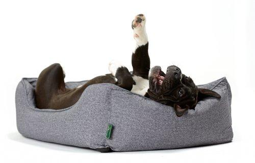 Hunter 61429 Hundesofa Boston, S, Aussenfläche – 67 x 55 x 20 cm, Innenkissen – 52 x 42 cm, grau - 4