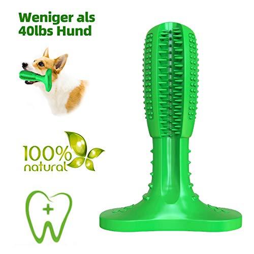 JarGaBo Hundezahnbürste Stick, Hunde mit Zahnpflege, Kauspielzeug aus Naturgummi Molar Stick mit Reinigungsbürsten