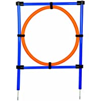 Trixie 3208 Aro para Agility, 115 x 3 cm, Azul Naranja