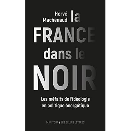 La France dans le noir: Les méfaits de l'idéologie en politique énergétique (Entreprises et société t. 39)