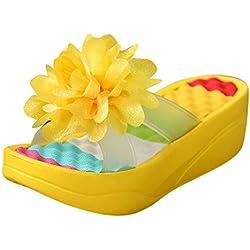 Été Sandales Plateformes Flip Flops Chaussons Sandales Balançoire Coin Femmes Trou Chaussures