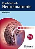 Kurzlehrbuch Neuroanatomie