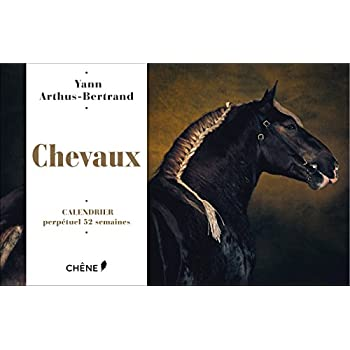 Calendrier 52 semaines Chevaux