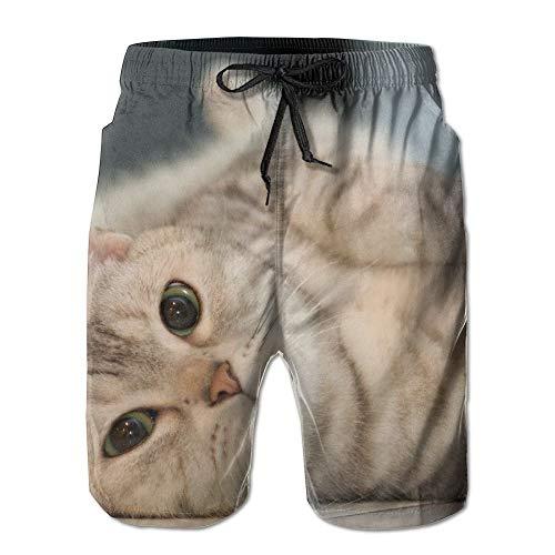Men's Shorts Swim Beach Trunk Summer Cat Kitten Kitty Pet Fit Fashion Shorts with Pockets - XL -