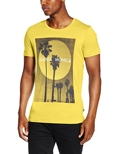 Q/S designed by - s.Oliver Herren T-Shirt 48.606.32.4297 Mehrfarbig (Mehrfarbig 13D1)