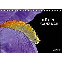 Blüten ganz nah (Tischkalender 2019 DIN A5 quer): Nahaufnahmen verschiedener Blüten (Monatskalender, 14 Seiten ) (CALVENDO Natur)