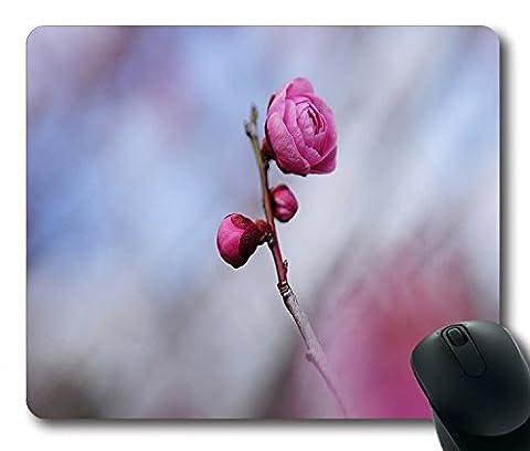 Flowers Twig Fleurs Rose Photo en caoutchouc antidérapant Gaming Mouse Pad Taille 22,9cm (220mm) x 17,8cm (180mm) x 1/8(3mm)