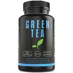 GYM-NUTRITION® PREMIUM Grüner Tee Extrakt Kapseln | 120 Kapseln Grüntee Extrakt Hochdosiert | Vegan | Beliebt bei Definitionsphase und Diät | Made in Germany| 2 Monats Vorrat |Green Tea| Grünteekapsel