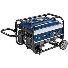 Einhell BT-PG 3100/1 - Generador eléctrico, incluye sistema AVR (Regulación Automática Voltaje)
