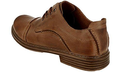 Polbut 910 Classic Homme Cuir Chaussures À Lacets Marron