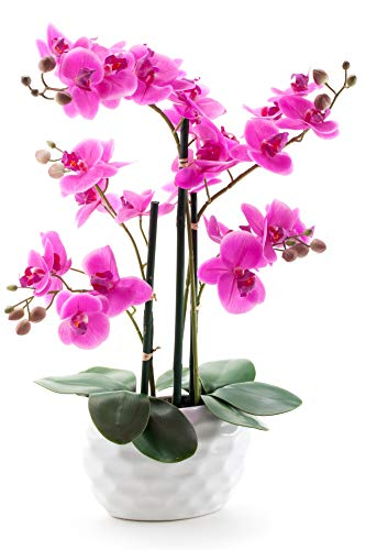 Decoline Kunstpflanze Orchidee XL mit Keramiktopf – ca. 53cm hoch