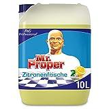 Meister Proper Professional Allzweckreiniger Zitrus, 10 L