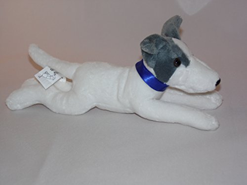 greyhound-with-blue-collar-23cm-beautiful-white-and-blue-greyhound