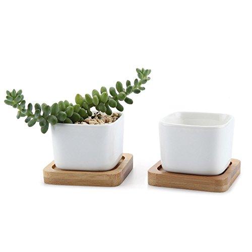 t4u-conjunto-de-2-cuadrado-mini-blanco-ceramicos-planta-maceta-suculento-cactus-planta-maceta-planta
