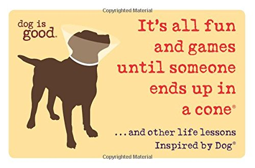 its-all-fun-and-games-until-someone-ends-up-in-a-coner-and-other-life-lessons-inspired-by-dogr-dog-i