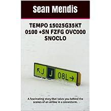 TEMPO 15025G35KT 0100 +SN FZFG OVC000 SNOCLO (English Edition)