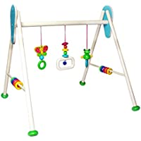 Hess Wooden Baby Activity Baby Gym Frog Toni Toy