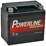 YTX12-BS Powerline Batterie Moto 12V 10Ah