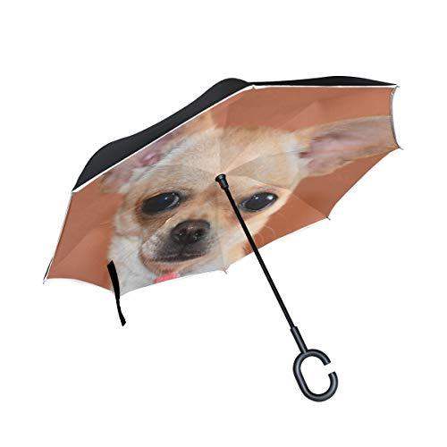 Niedliche Chihuahua Hund Tier Doppelschicht Falten Anti-Uv Schutz Winddicht Regen Gerade Autos Golf Umgekehrt Regenschirm Stand Mit C förmigen Griff