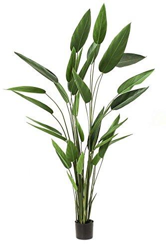 artplants Set 2 x künstliche Heliconia ANURIA, 32 Blätter, grün, 220 cm – Kunstpflanze/Deko Helkonien