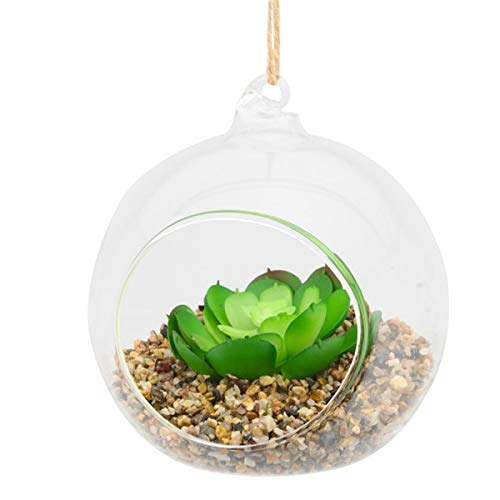 Deko-Glaskugel, zum Aufhängen, für künstliche Sukkulenten (Glaskugel Ornamente Klare Kleine)