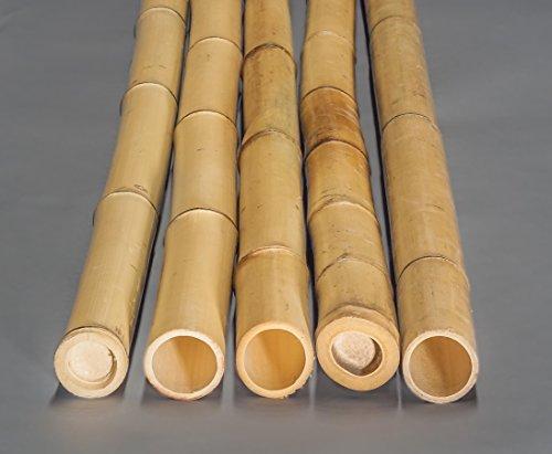 Die Besten Terrassenmaterialien Zaunmaterialien Holz Im Garten